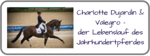 Linkbanner_Valegro-300x113