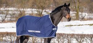 Pferdedecken-Ratgeber