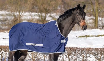 Pferdedecken Bucas Abschwitzdecke Select Cooler
