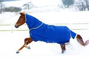 Winterdecke-Horseware-Rambo-Original-300x200