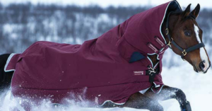 Winterdecke_Horseware-Rambo-All-In-One-Turnout_2-300x157