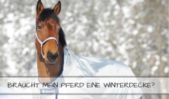 Winterdecken für Pferde