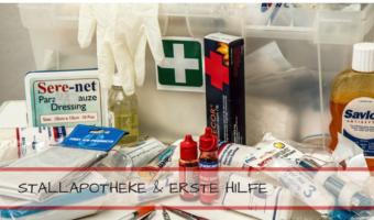 Stallapotheke Erste Hilfe-Checkliste