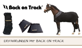 Erfahrungen mit Back on Track