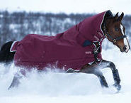 Pferd-Winterdecke