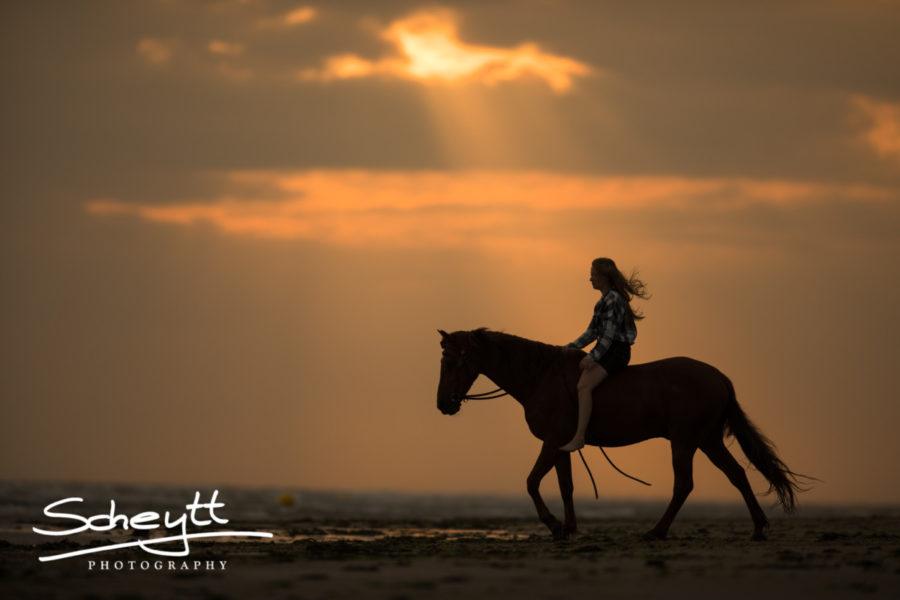 Pferdefotoshooting-romantisch-900x600