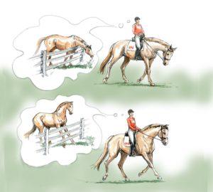 Pferd-läuft-auf-der-Vorhand-korrigieren-300x270