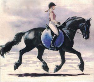 Pferd-Rücken-aufwölben-300x264