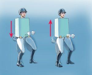 Reiten-vorwärts-aufwärts-Bewegung-Oberkörper-300x246