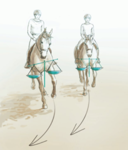 ausbalanciertes-Pferd-257x300