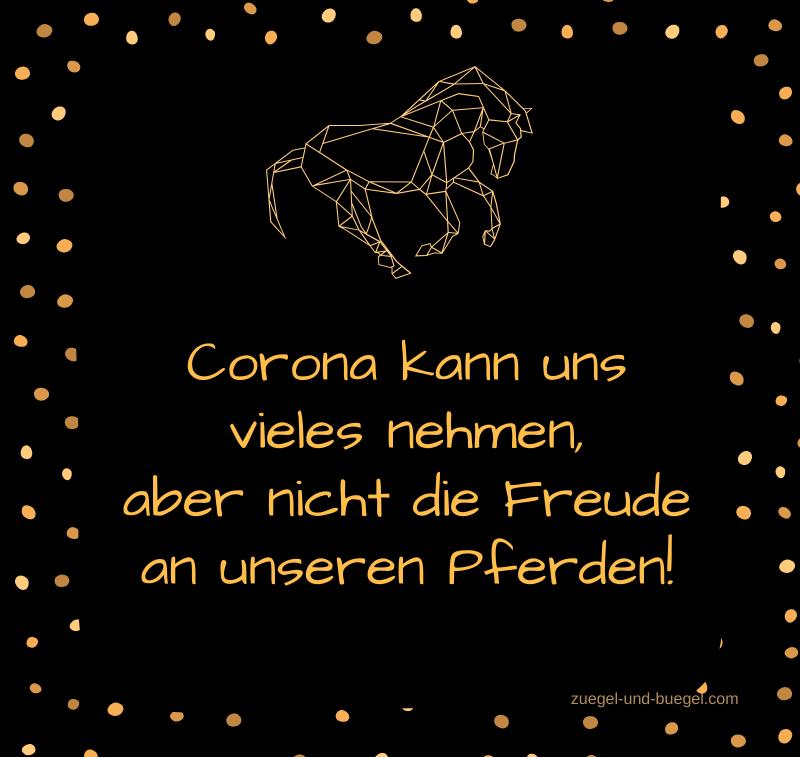 Corona_Freude-an-Pferden-800x757
