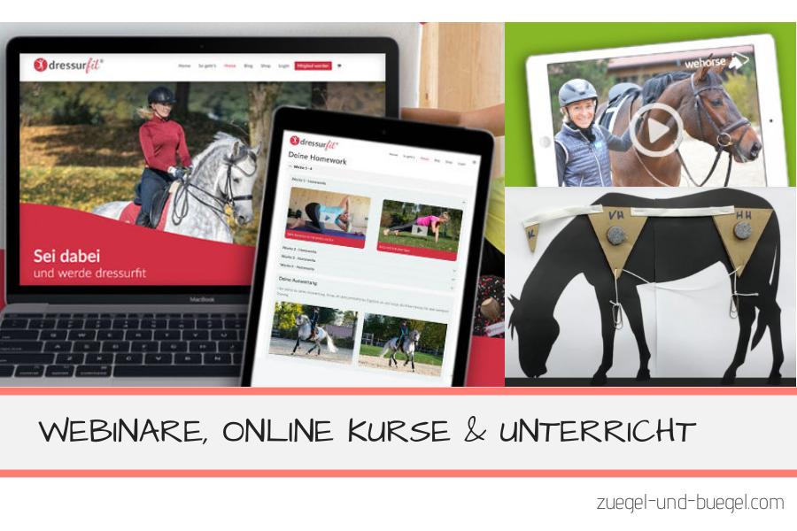 online Angebote für Reiter Webinare online Kurse und Unterricht