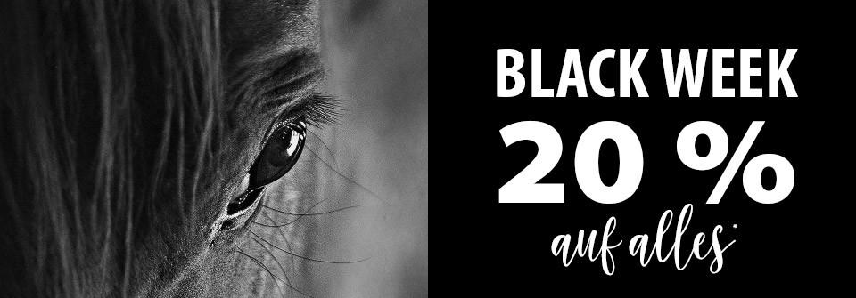 Black-Week-Equiva
